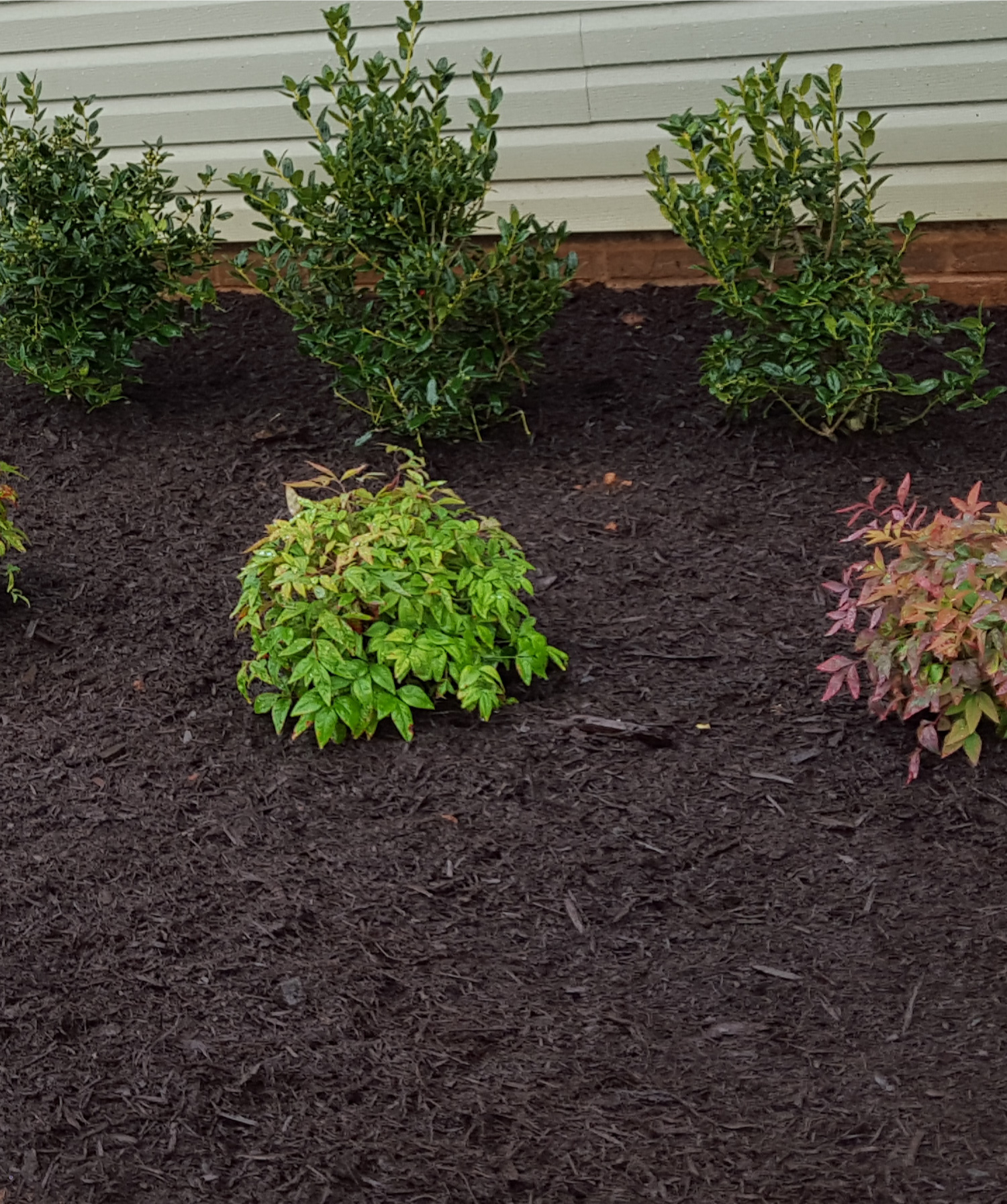 Lawncare and Landscaping Murfreesboro