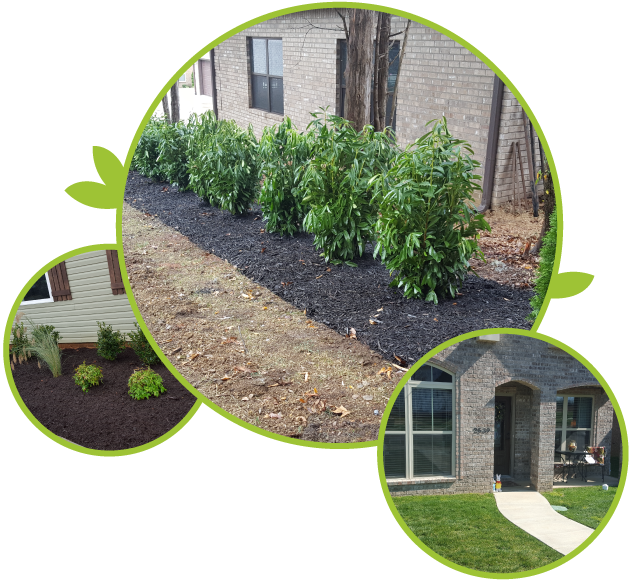 Examples of Landscaping work